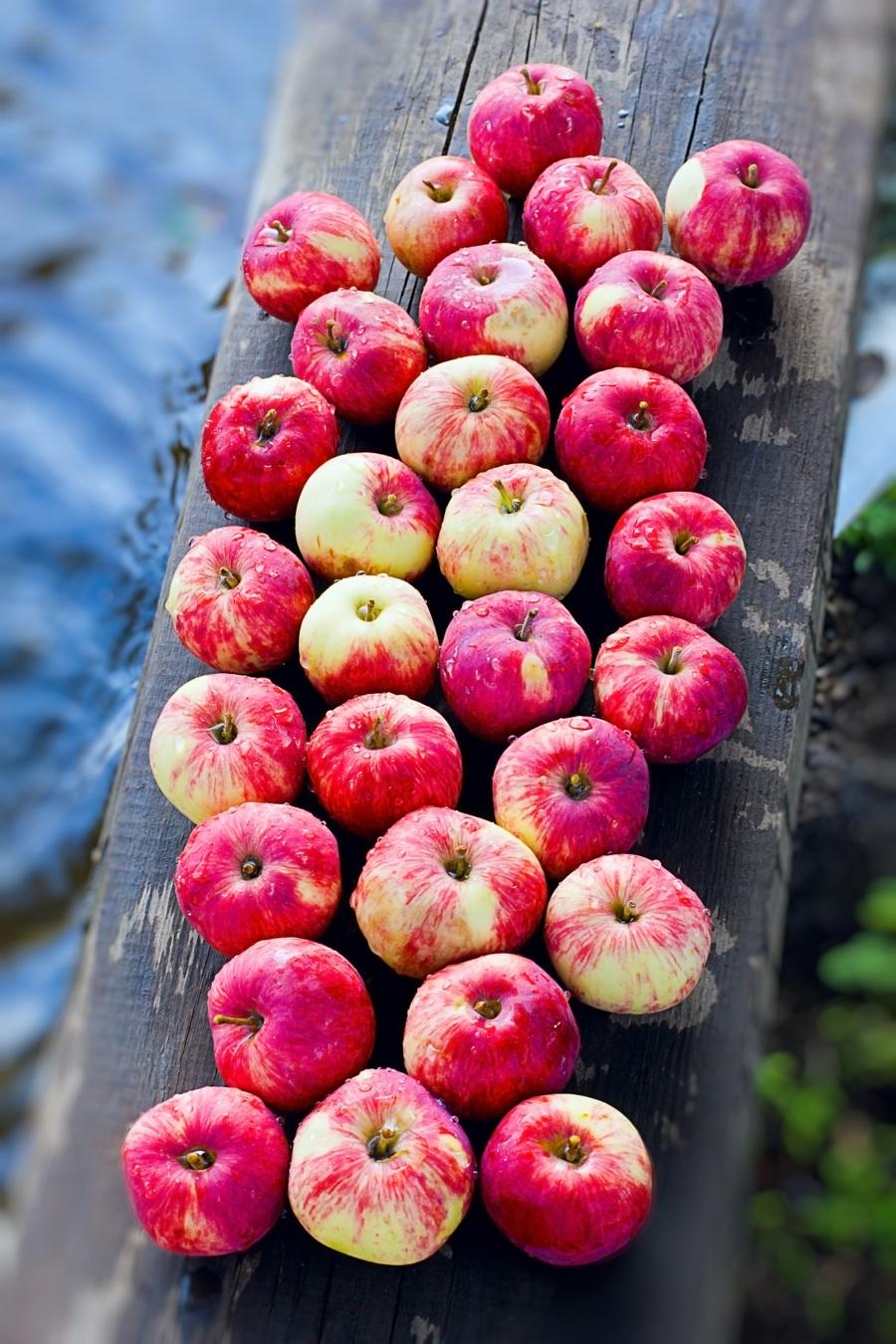 Jablka jsou v metabolic balance důležitá