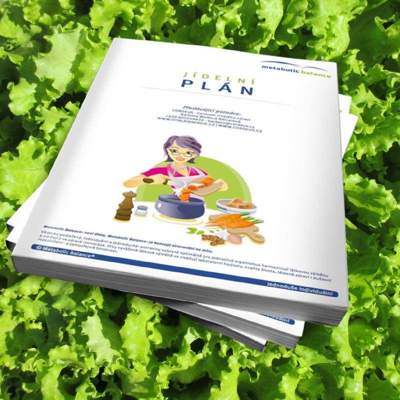 Program Metabolic Balance® - osobní jídelní plán, osobní dohled poradce